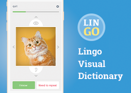 Lingo Visual Dictionary